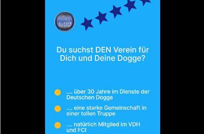 30 Jahre KyDD - im Dienste der Deutschen Dogge?